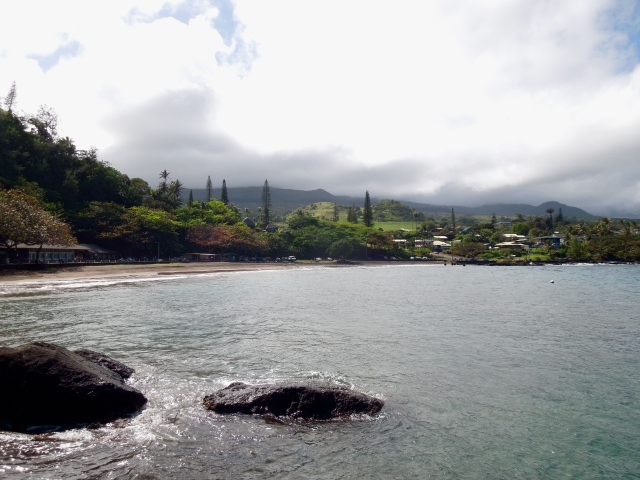 The collection of buildings in this photo makes up the majority of the town of Hana