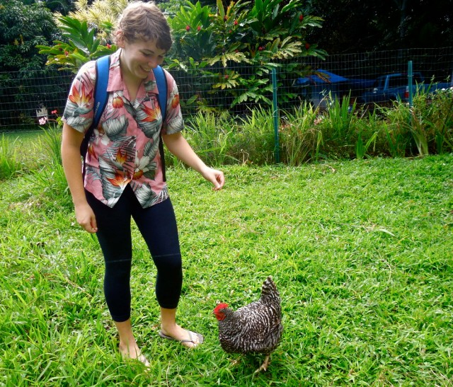 Farm Life (the chicken's name is Dinosaur!)