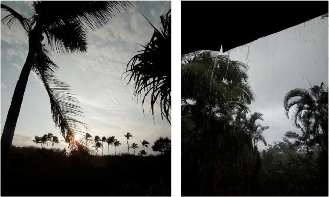Picturesque / Wet