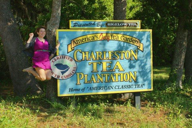 charlestonteaplantationjoy